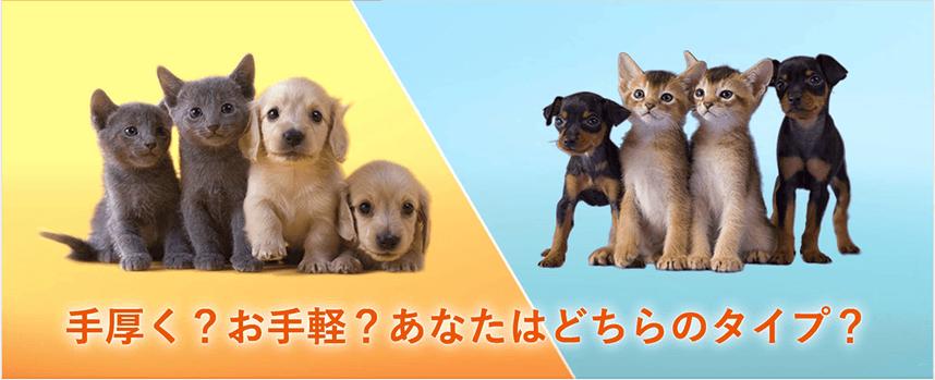 ペットの保険 au損害保険【ペッ...
