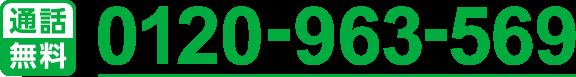 0120-963-569